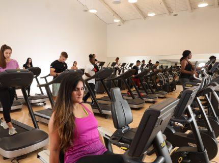 Wynn Fitness Meadowvale Cardio